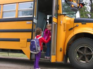 Fall Routine School Bus